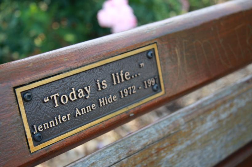 La Vida es Hoy