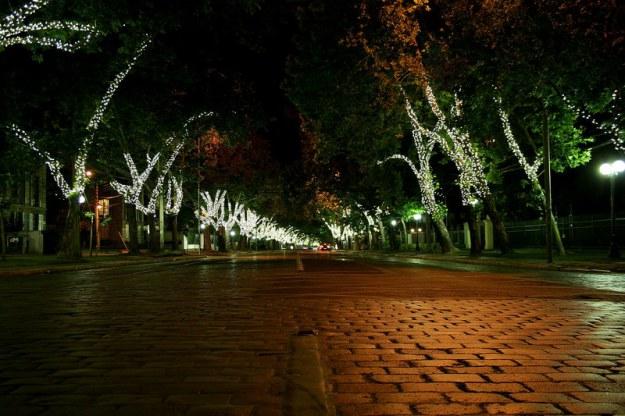 ...y algunas luminarias navideñas...